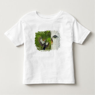 USA, Washington, Yakima. Male pleated Toddler T-Shirt