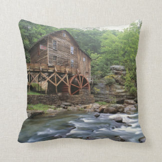 USA, West Virginia, Babcock SP. Rustic Glade Throw Pillow