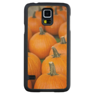 USA, West Virginia, Charleston. Capitol 2 Maple Galaxy S5 Case