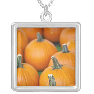 USA, West Virginia, Charleston. Capitol 2 Silver Plated Necklace