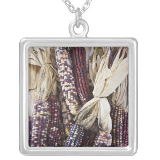 USA, West Virginia, Charleston. Capitol Silver Plated Necklace