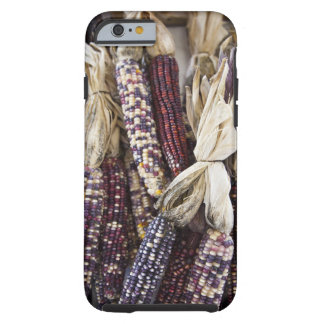 USA, West Virginia, Charleston. Capitol Tough iPhone 6 Case