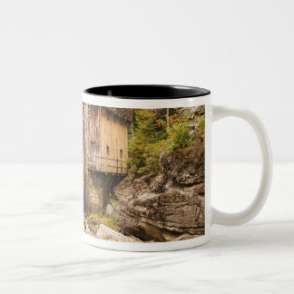 USA, West Virginia, Clifftop. Babcock State 2 Two-Tone Coffee Mug