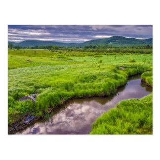 USA, West Virginia, Davis. Landscape 2 Postcard