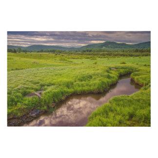 USA, West Virginia, Davis. Landscape 2 Wood Wall Art
