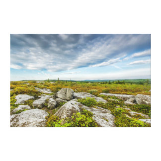 USA, West Virginia, Davis. Landscape In Dolly Gallery Wrap Canvas