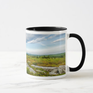 USA, West Virginia, Davis. Landscape In Dolly Mug