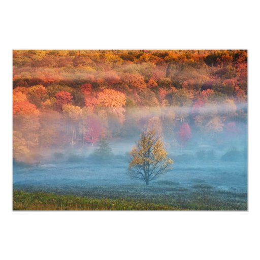 USA, West Virginia, Davis. Misty valley and Photographic Print