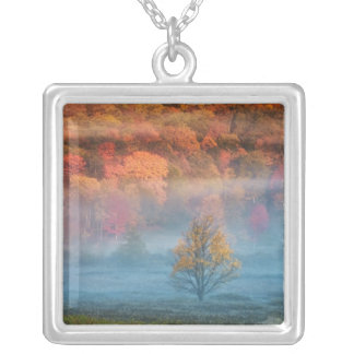 USA, West Virginia, Davis. Misty valley and Silver Plated Necklace