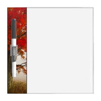 USA, West Virginia, Davis. Red maple in autumn Dry Erase Board