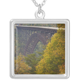 USA, West Virginia, Fayetteville. New River Silver Plated Necklace