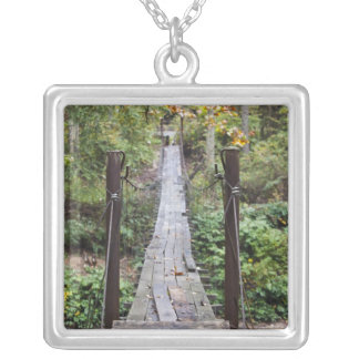 USA, West Virginia, New Richmond. National Silver Plated Necklace