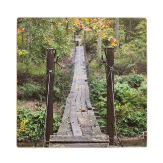 USA, West Virginia, New Richmond. National Wood Coaster