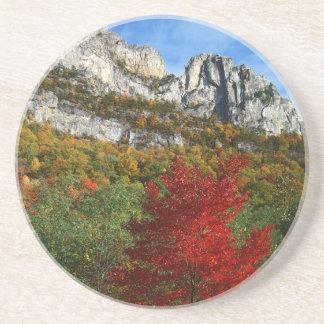 USA, West Virginia, Spruce Knob-Seneca Rocks Coaster