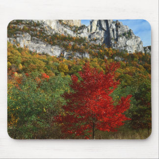USA, West Virginia, Spruce Knob-Seneca Rocks Mouse Mat
