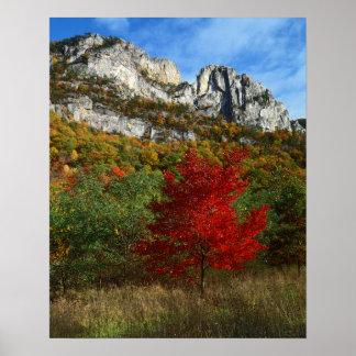 USA, West Virginia, Spruce Knob-Seneca Rocks Poster