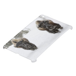 USA, WY, Yellowstone NP, American Bison (Bison iPad Mini Cases