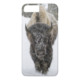 USA, WY, Yellowstone NP, American Bison (Bison iPhone 8 Plus/7 Plus Case