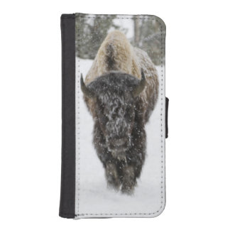 USA, WY, Yellowstone NP, American Bison (Bison iPhone SE/5/5s Wallet Case