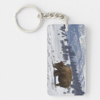 USA, WY, Yellowstone NP, American Bison Bison Key Ring