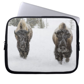 USA, WY, Yellowstone NP, American Bison (Bison Laptop Sleeve