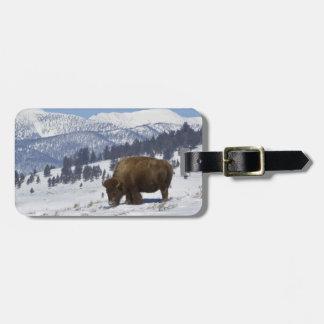 USA, WY, Yellowstone NP, American Bison Bison Luggage Tag