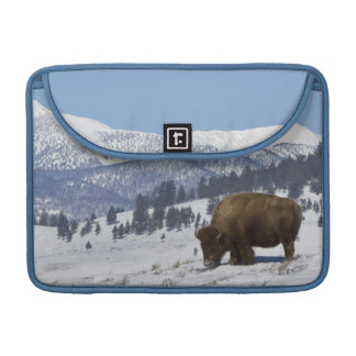USA, WY, Yellowstone NP, American Bison Bison Sleeve For MacBooks