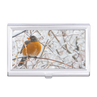 USA, Wyoming, American Robin roosting on willow Business Card Holder