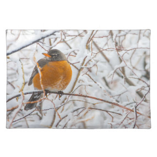 USA, Wyoming, American Robin roosting on willow Placemats