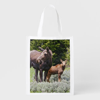 USA, Wyoming, Bighorn Mountains, moose Alces Reusable Grocery Bag