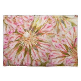USA, Wyoming, Buckwheat wildflower close-up Placemat