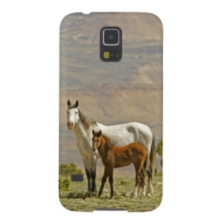 USA, Wyoming, Carbon County. Wild horse mare Galaxy S5 Cover