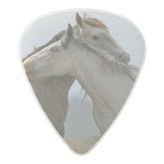 USA, Wyoming, Carbon County. Wild horses 2 Acetal Guitar Pick