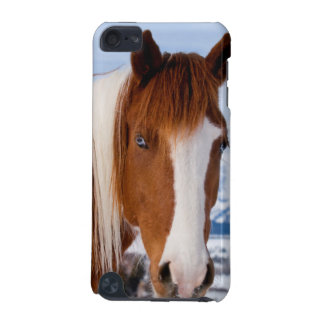USA, Wyoming, Grand Teton National Park 3 iPod Touch (5th Generation) Cover