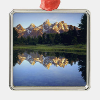USA, Wyoming, Grand Teton National Park. Grand Silver-Colored Square Decoration
