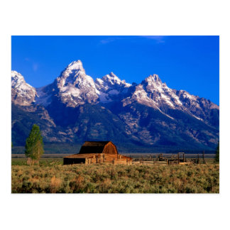 USA, Wyoming, Grand Teton National Park, Morning Postcard