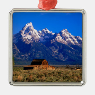 USA, Wyoming, Grand Teton National Park, Morning Silver-Colored Square Decoration