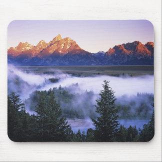USA, Wyoming, Grand Teton National Park. The Mouse Pad