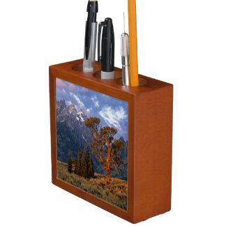 USA, Wyoming, Grand Teton NP. A lone cedar Desk Organiser