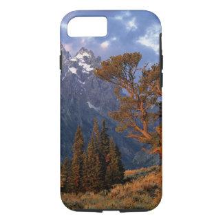 USA, Wyoming, Grand Teton NP. A lone cedar iPhone 8/7 Case