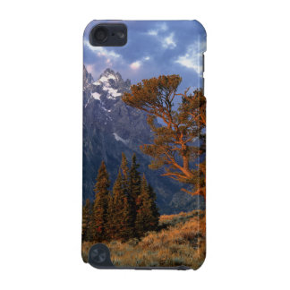 USA, Wyoming, Grand Teton NP. A lone cedar iPod Touch (5th Generation) Cases