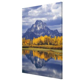 USA, Wyoming, Grand Teton NP. Against the Canvas Print
