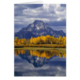 USA, Wyoming, Grand Teton NP. Against the Card