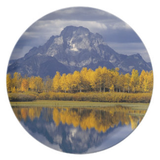 USA, Wyoming, Grand Teton NP. Against the Plate
