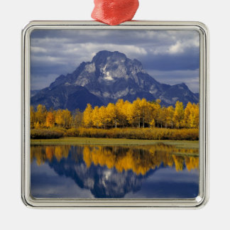 USA, Wyoming, Grand Teton NP. Against the Silver-Colored Square Decoration