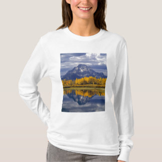 USA, Wyoming, Grand Teton NP. Against the T-Shirt