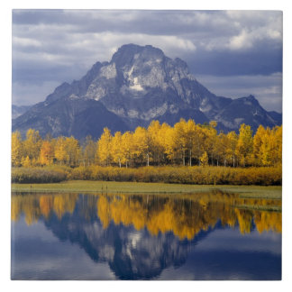 USA, Wyoming, Grand Teton NP. Against the Tile