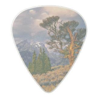 USA, Wyoming, Grand Teton NP. Sunrise greets a Acetal Guitar Pick