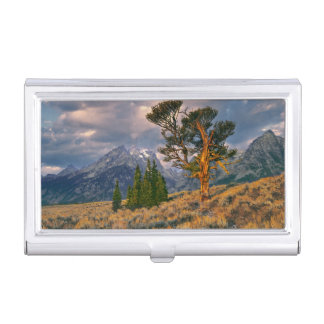 USA, Wyoming, Grand Teton NP. Sunrise greets a Business Card Holder