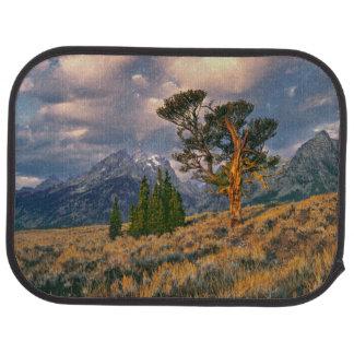 USA, Wyoming, Grand Teton NP. Sunrise greets a Car Mat